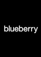 Blueberry 93dea4f2 boxcover