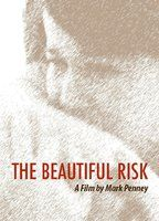 The beautiful risk b091356d boxcover