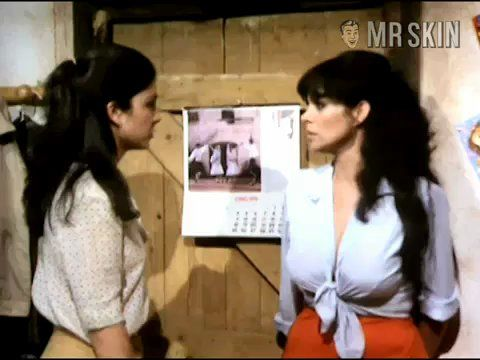 Perros poveda2 frame 3
